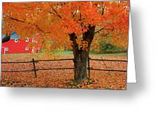 Autumn Near New Germany, Nova Scotia Greeting Card