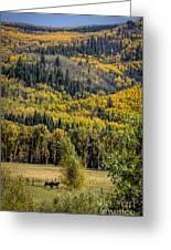 Autumn On A Colorado Range Greeting Card