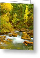 Autumn On Big Cottonwood River Greeting Card