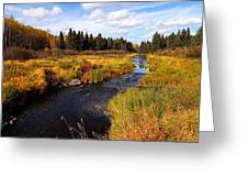 Autumn On Jackfish Creek Greeting Card