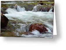 Autumn On Jackson Creek Greeting Card