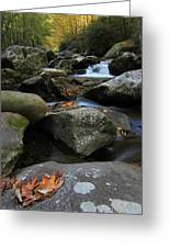 Autumn On Little River In The Smoky Mountains Greeting Card