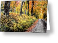 Autumn On Long Pond Road Greeting Card