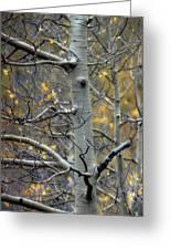 Autumn On My Mind Greeting Card