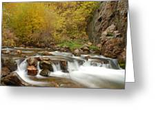 Autumn On The Provo River Greeting Card