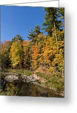 Autumn On The Riverbank - The Changing Forest Greeting Card