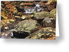 Autumn On The Rocks Greeting Card