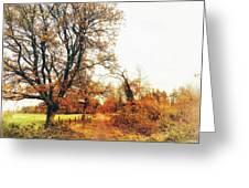 Autumn On White Greeting Card