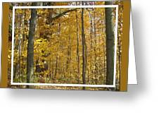 Autumn Out My Window Greeting Card