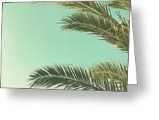 Autumn Palms II Greeting Card