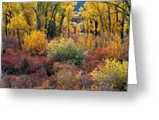 Autumn Panoramic Greeting Card