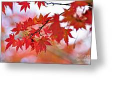 Autumn Pastel Greeting Card