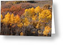 Autumn Patchwork Greeting Card