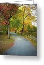 Autumn Path II Greeting Card