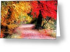 Autumn Path II Greeting Card