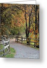 Autumn Path In Park In Maryland Greeting Card