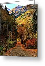 Autumn Path To Stewart Falls Greeting Card