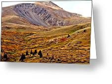 Autumn Peaks In The Rockies Greeting Card