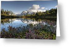 Autumn Picture Lake M114 Greeting Card