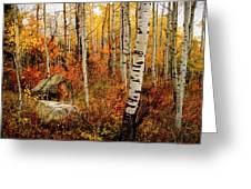 Autumn Quakies Greeting Card