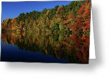 Autumn Reflection Of Colors Greeting Card