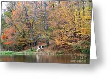 Autumn Reflections Cow Farm Greeting Card