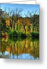 Autumn Reflections On Salt Creek IIi Greeting Card