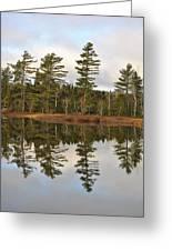 Autumn Reflector Greeting Card