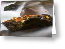 Autumn Resting Place Greeting Card