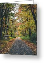 Autumn Road Greeting Card