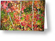 Autumn Sanctuary Greeting Card