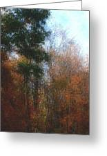 Autumn Scene 10-23-09 Greeting Card