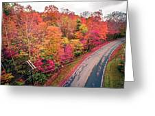 Autumn Season And Color Changing Leaves Season Greeting Card