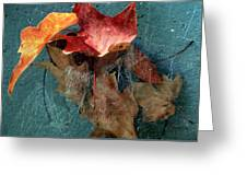 Autumn Seined Greeting Card