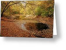 Autumn Serenity Greeting Card