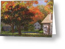 Autumn Shadow And Light Greeting Card