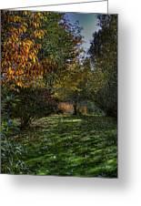 Autumn Shadows Greeting Card