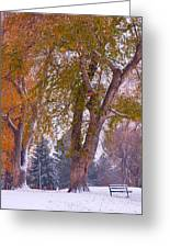 Autumn Snow Park Bench   Greeting Card