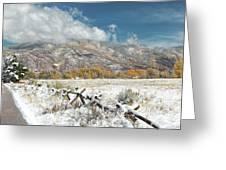 Autumn Snowfall In Aspen Greeting Card