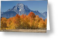 Autumn Splendor In Grand Teton Greeting Card