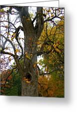 Autumn Spook Greeting Card
