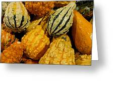 Autumn Squash Greeting Card