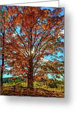 Autumn Star- Paint Greeting Card
