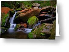 Autumn Stream Greeting Card