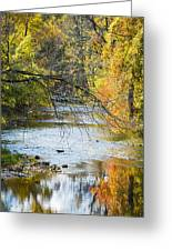 Autumn Stream Reflections Greeting Card