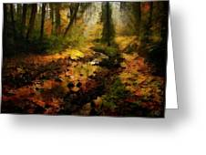Autumn Sunrays Greeting Card by Gun Legler