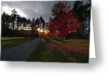 Autumn Sunset, Shawnigan Lake Greeting Card