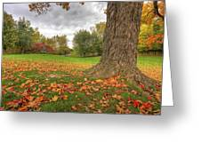 Autumn Tale Greeting Card