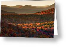 Autumn Tapestry Greeting Card by Neil Shapiro