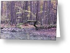 Autumn Theme Greeting Card